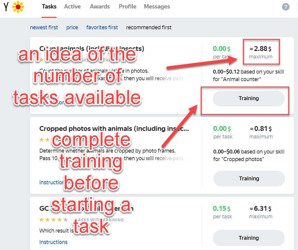 toloka tasks and earning