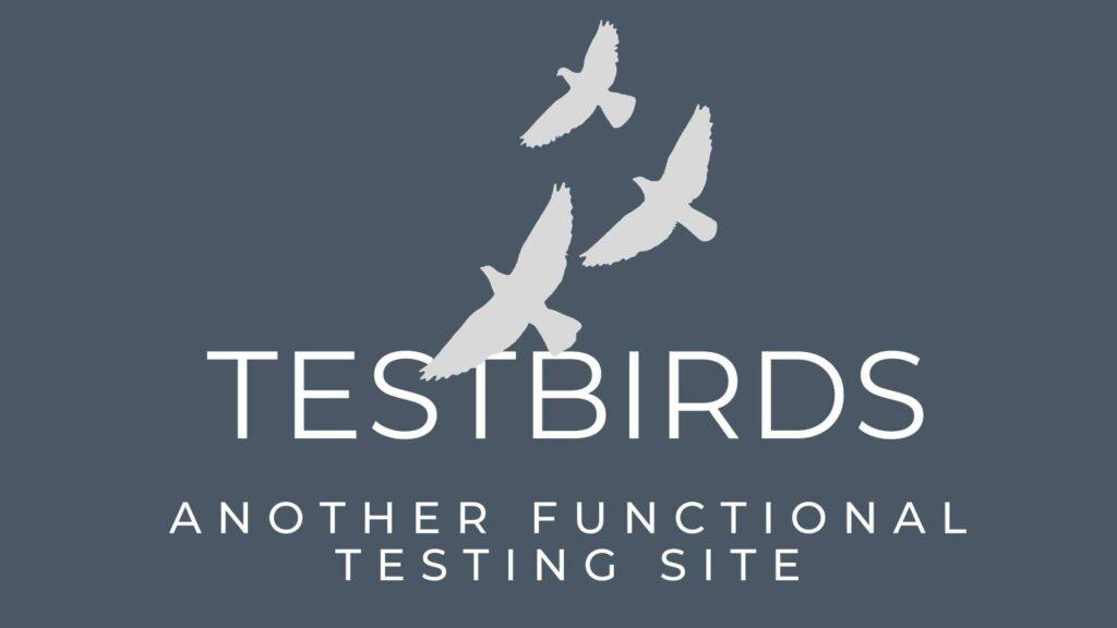 testbirds testing money